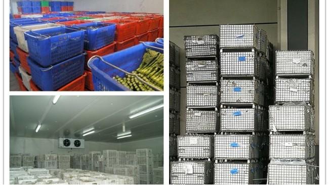 仓储笼农产品应用